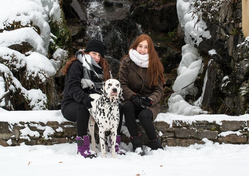 Beneficios de los perros del Camping Verneda