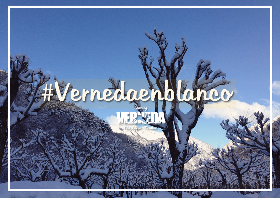 verneda-blanco-blog